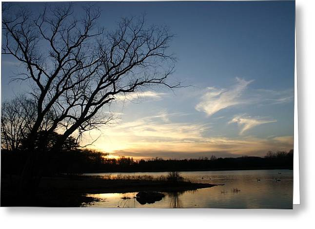 Twilight Tapestries - Textiles Greeting Cards - Sunset on Lake Nevin Greeting Card by Thia Stover
