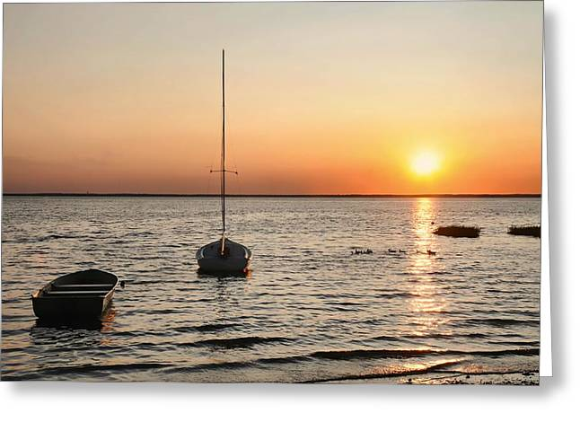 Two Sail Boats Greeting Cards - Sunset on LBI Greeting Card by Diana Angstadt