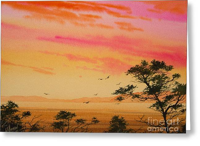 Sunset Framed Prints Greeting Cards - Sunset on the Coast Greeting Card by James Williamson