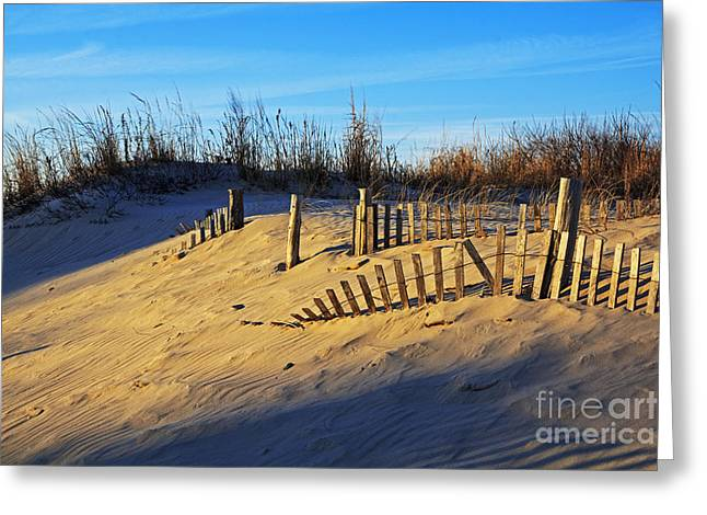 Sand Fences Greeting Cards - Sunset on the Dunes Greeting Card by Robert Pilkington