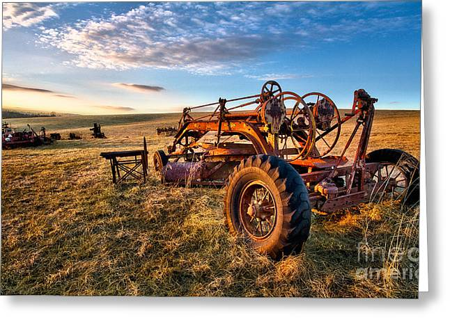 Pasture Framed Prints Greeting Cards - Sunset on the Farm in North Carolina I Greeting Card by Dan Carmichael