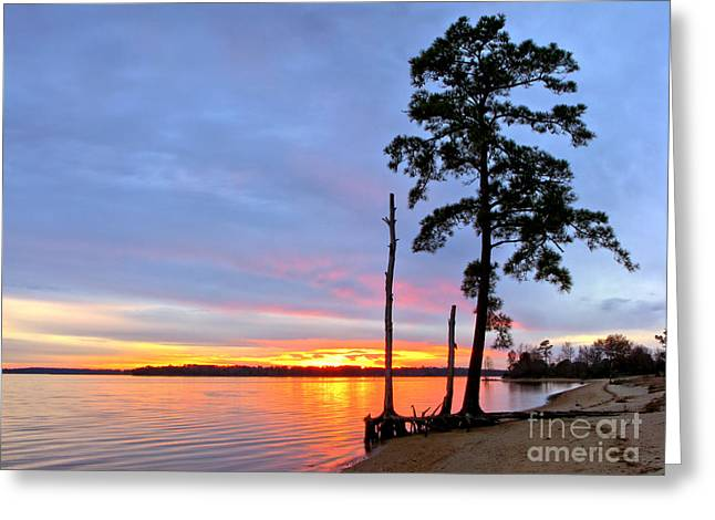 Sunset on the James River Greeting Card by Olivier Le Queinec