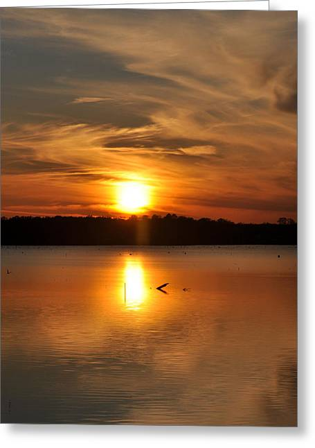 Toledo Bend Greeting Cards - Sunset on The Lake Greeting Card by Pam Garcia