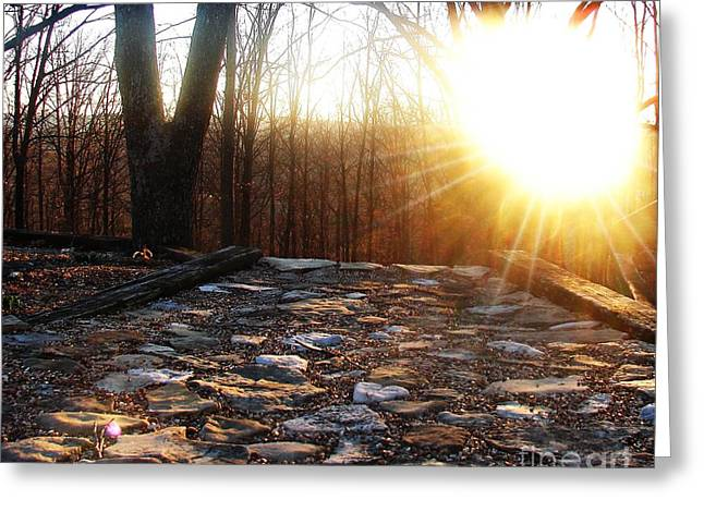 Branson Mo Greeting Cards - Sunset on the Path Greeting Card by Pics by Jody Adams