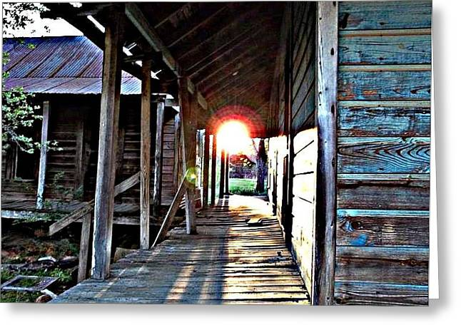 Tin Roof Greeting Cards - Sunset on the porch Greeting Card by Kristy Cotone