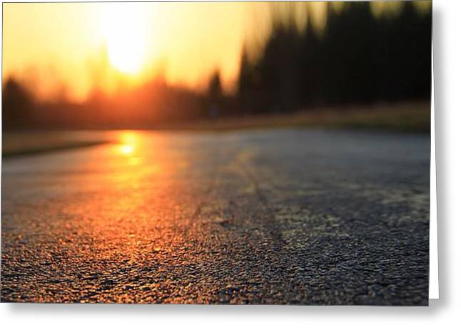 Peaceful Tree At Sunset Greeting Cards - Sunset On The Road Greeting Card by Dan Sproul