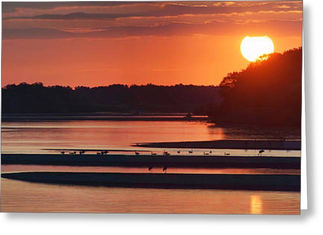 Water Fowl Greeting Cards - Sunset on the Wisconsin River Greeting Card by Leda Robertson