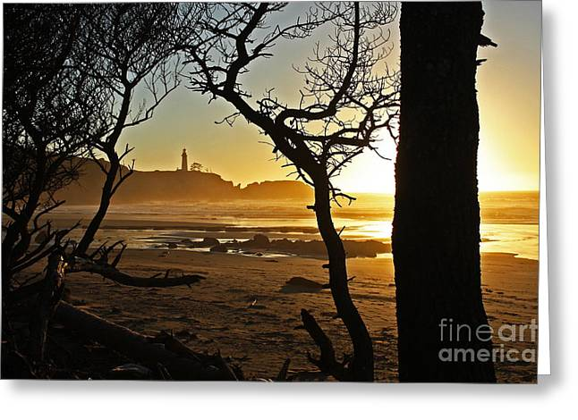 Sunset On Yaquina Head One Greeting Card by Donald Sewell