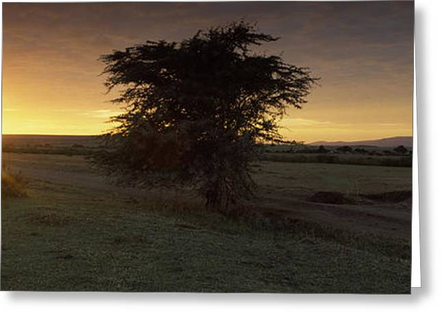 Rift Greeting Cards - Sunset Over A Landscape, Masai Mara Greeting Card by Panoramic Images