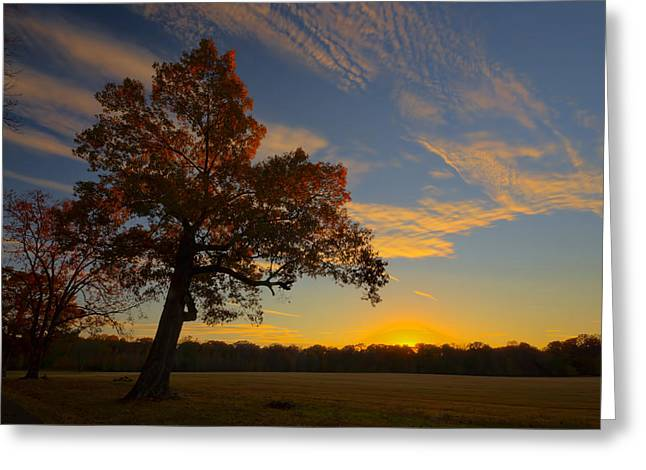 Landing Place Greeting Cards - Sunset Over Barnes Field Greeting Card by Mike Talplacido