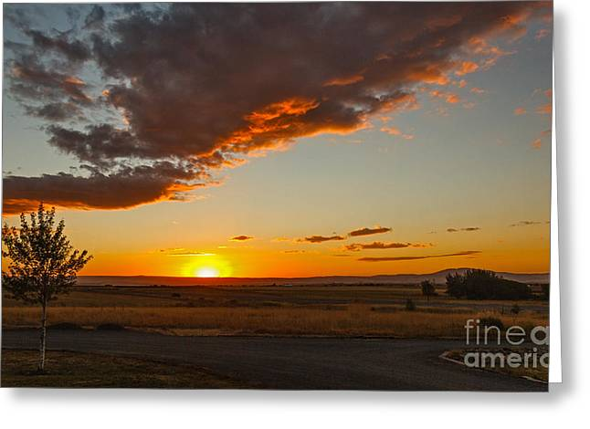 Salmon River Idaho Greeting Cards - Sunset Over Camas Prairie  Greeting Card by Robert Bales