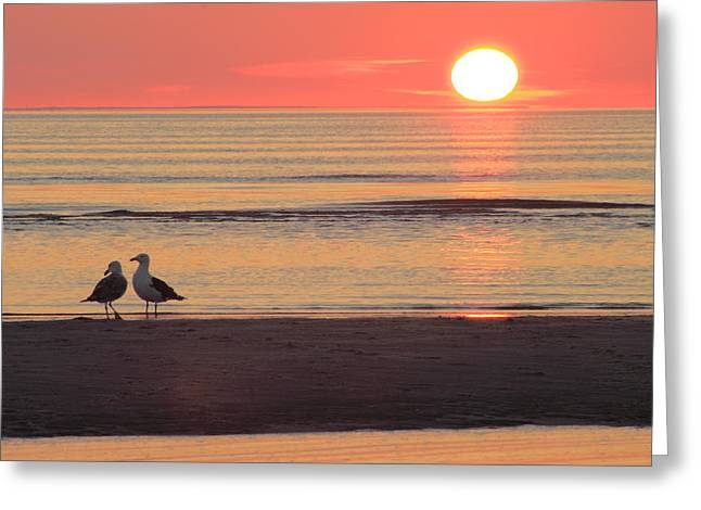 Cape Cod Bay Greeting Cards - Sunset over Cape Cod Bay Greeting Card by John Burk