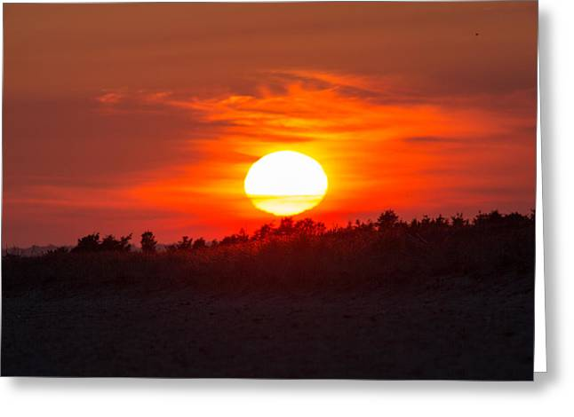 Sunset Over Dead Neck Greeting Card by Allan Morrison
