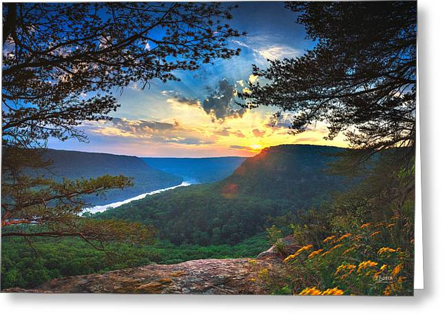 Tn Greeting Cards - Sunset Over Edwards Point Greeting Card by Steven Llorca