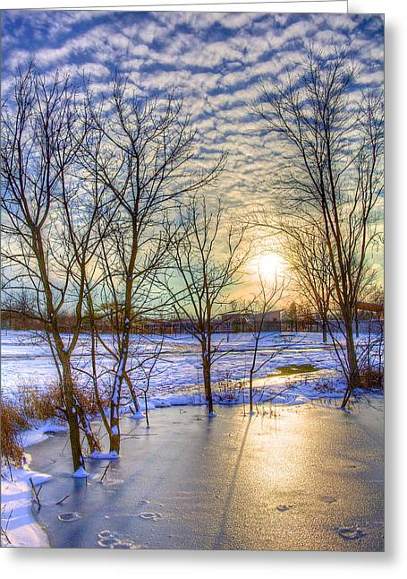 Tress Greeting Cards - Sunset over Ice Greeting Card by William Wetmore