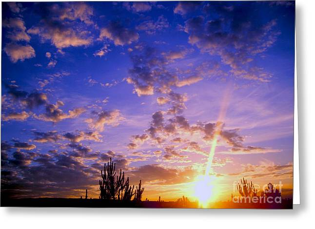 Gloaming Greeting Cards - Sunset Over Ireland Greeting Card by Nina Ficur Feenan