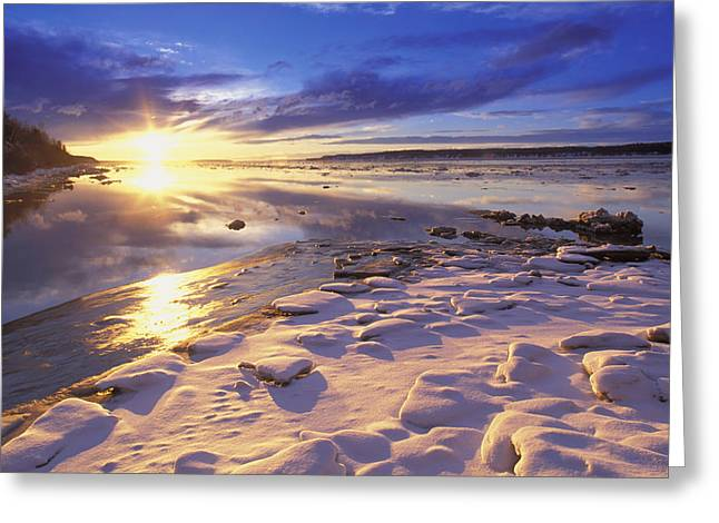 Beautiful Creek Greeting Cards - Sunset Over Knik Arm & Six Mile Creek Greeting Card by Michael DeYoung