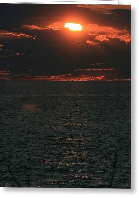 Beach Sand Birds Flying Clouds Sun Sky Trees Grass Building Day Beautiful Wings Flock Greeting Cards - Sunset over Lake Michigan Greeting Card by Paul Szakacs