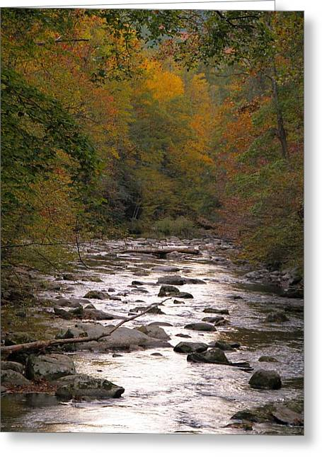 Gatlinburg Tennessee Greeting Cards - Sunset Over Little River Greeting Card by Dan Sproul