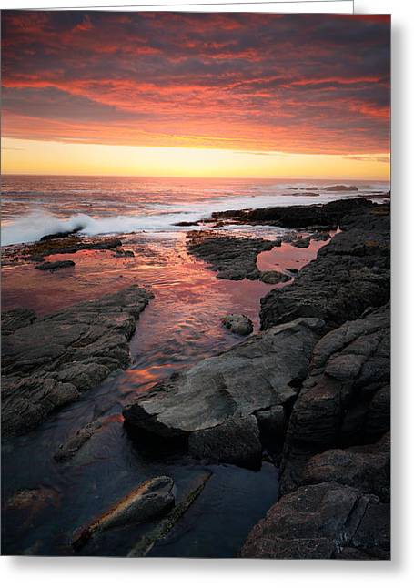Peaceful Scene Greeting Cards - Sunset over rocky coastline Greeting Card by Johan Swanepoel
