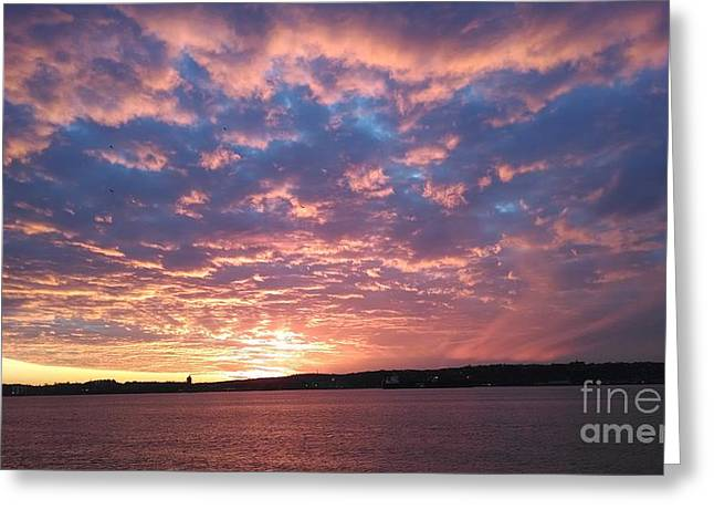 Reflection Of Sun In Clouds Greeting Cards - Sunset Over the Narrows Waterway Greeting Card by John Telfer