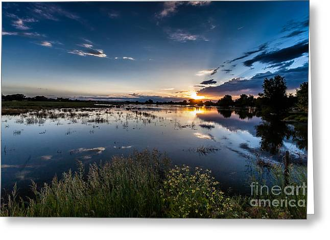 A Summer Evening Greeting Cards - Sunset over the River Greeting Card by Steven Reed