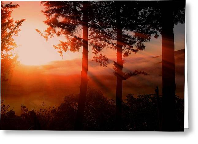 Best Sellers Greeting Cards - Sunset Over the Valley Greeting Card by Nikki Keep