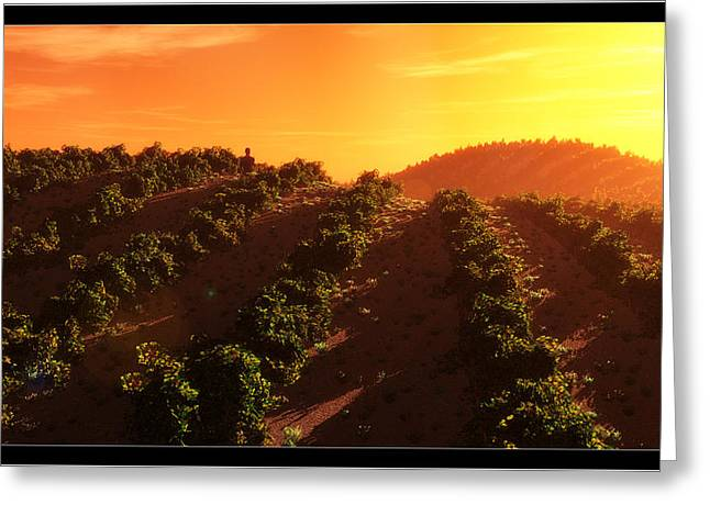 Vineyard Landscape Mixed Media Greeting Cards - Sunset Over the Valley Greeting Card by Tim Fillingim