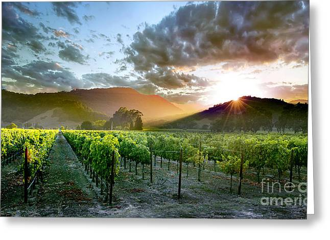 Champagne Glasses Greeting Cards - Wine Country Greeting Card by Jon Neidert