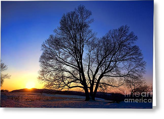 Snowy Evening Greeting Cards - Sunset over Valley Forge Greeting Card by Olivier Le Queinec