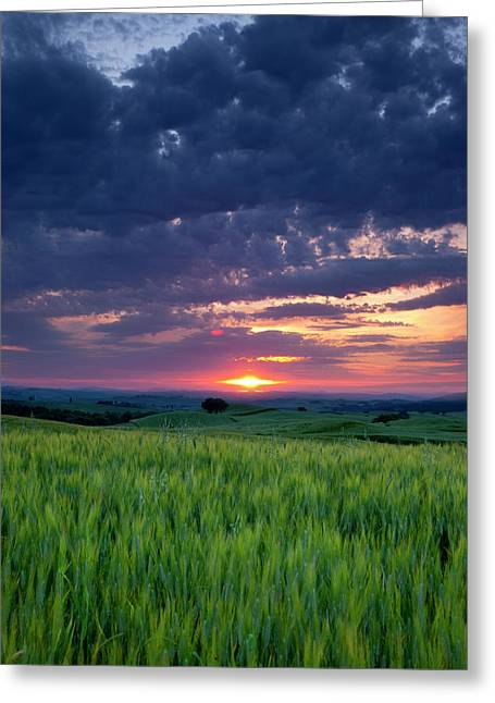 Sunset Over Wheat Field Near Pienza Greeting Card by Brian Jannsen