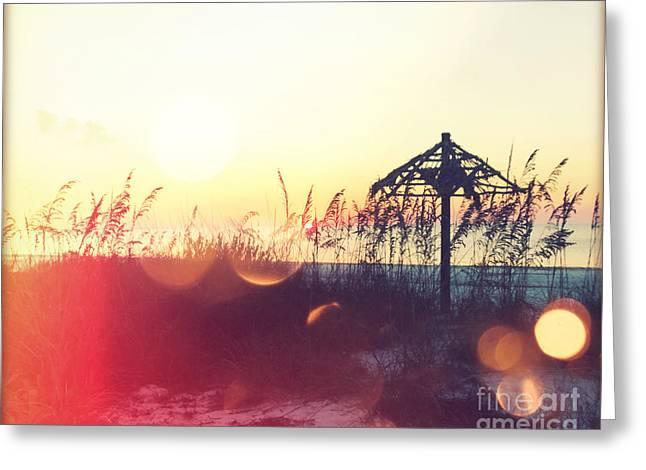 Tropical Beach Digital Art Greeting Cards - Sunset Palm III Greeting Card by Chris Andruskiewicz