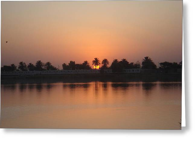 Baghdad Greeting Cards - Sunset Palms Over Lake Greeting Card by Sharla Fossen