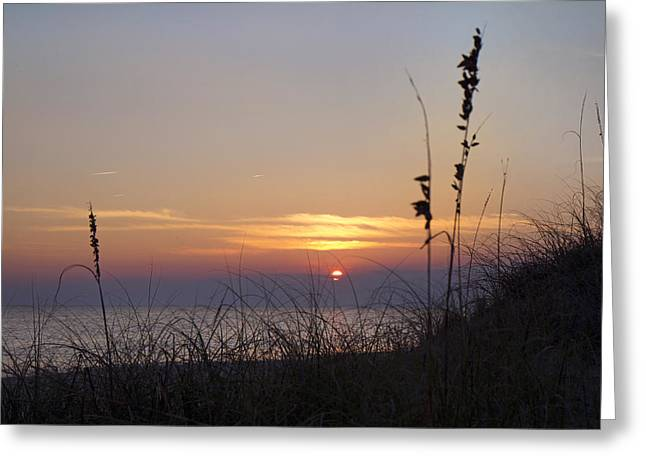 Silouette Greeting Cards - Sunset Paradise Greeting Card by Betsy C  Knapp