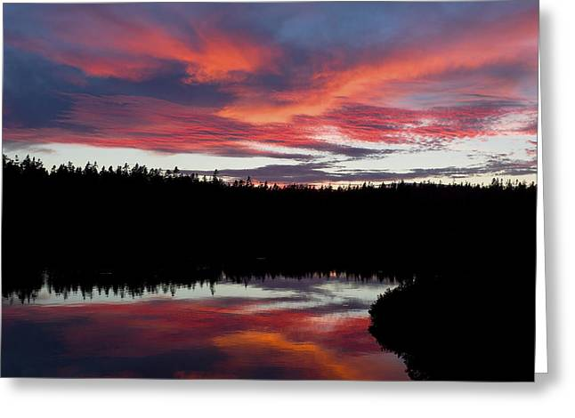 Seawall Greeting Cards - Sunset Reflecting Off Seawall Pond Acadia National Park Greeting Card by Keith Webber Jr