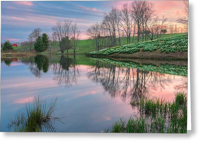 Springflowers Greeting Cards - Sunset Reflections Greeting Card by Bill  Wakeley