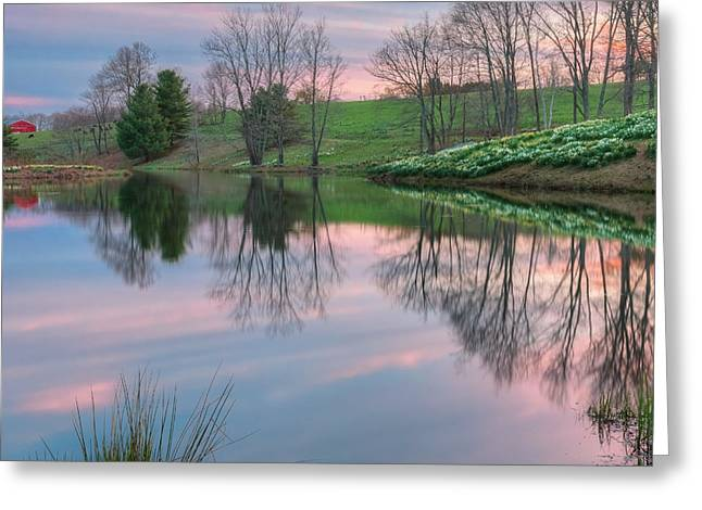 Daffodil Greeting Cards - Sunset Reflections Square Greeting Card by Bill  Wakeley