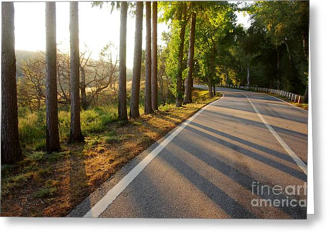 Evening Scenes Greeting Cards - Sunset Road Greeting Card by Carlos Caetano