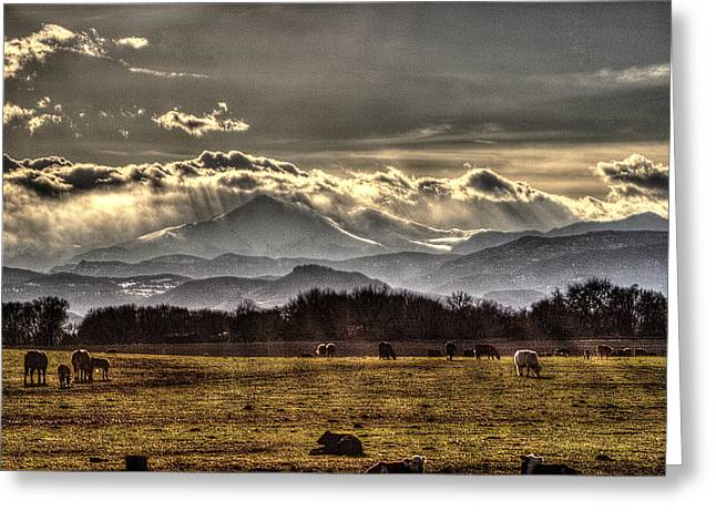 Grazing Snow Greeting Cards - Sunset Rocky Mountains Greeting Card by Roger Passman