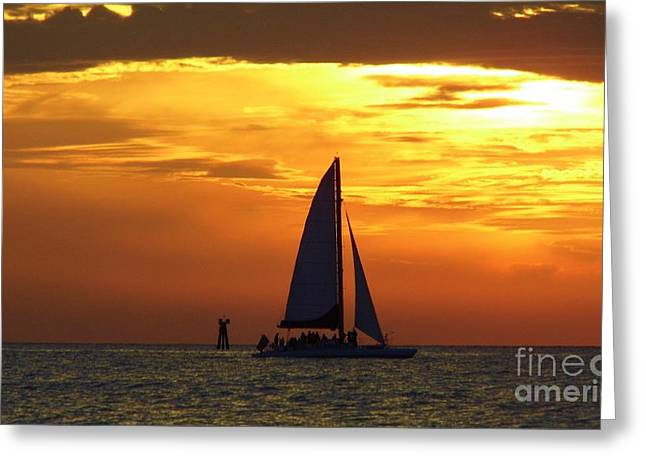 Boats In Reflecting Water Greeting Cards - Sunset Sail Away Greeting Card by D Hackett