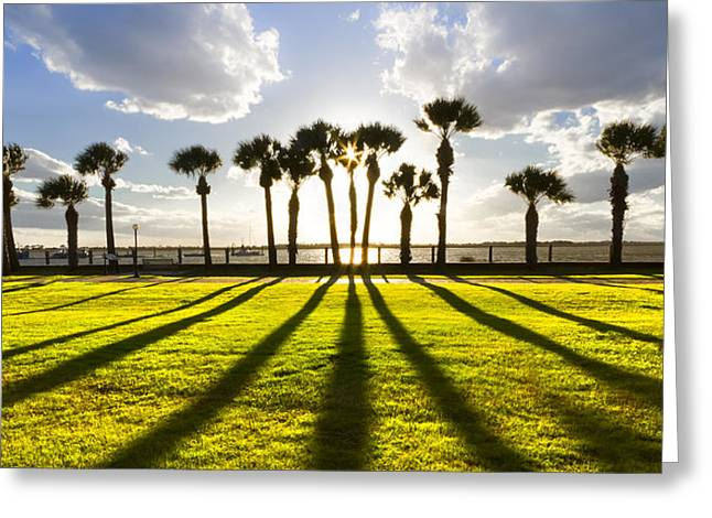 Foggy Beach Greeting Cards - Sunset Sentinels Greeting Card by Debra and Dave Vanderlaan