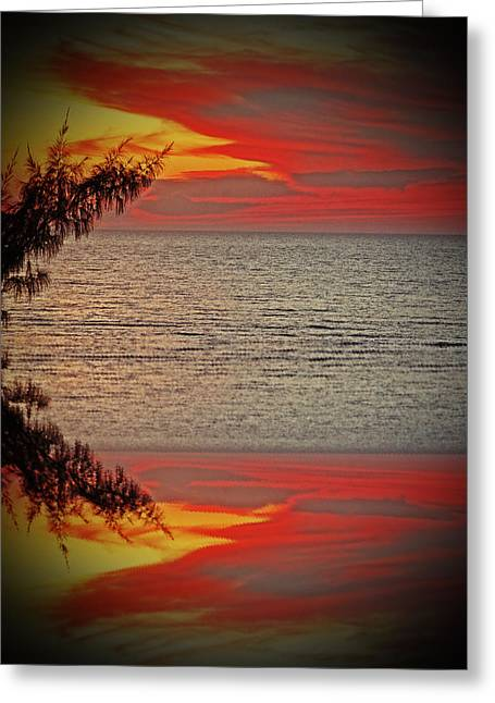 Artistically Altered Greeting Cards - Sunset Seranade 2 Greeting Card by Aimee L Maher Photography and Art
