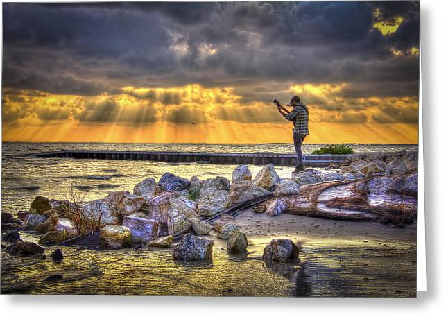 Seabirds Photographs Greeting Cards - Sunset Serenade  Greeting Card by Marvin Spates