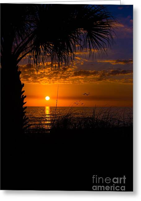 Ft. Meyers Beach Greeting Cards - Sunset Silhouette Greeting Card by Anne Kitzman