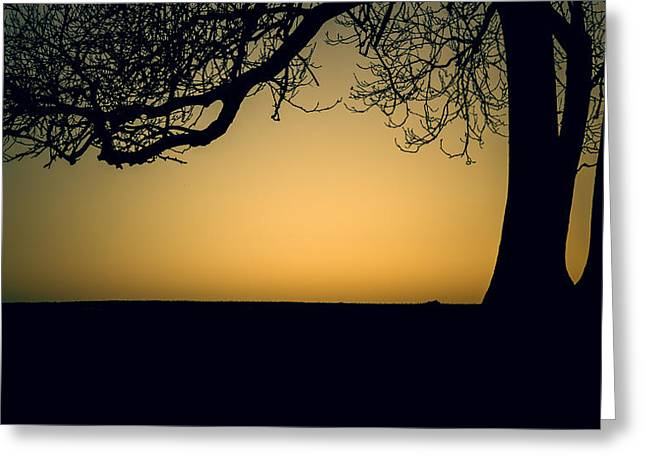 Fletcher Greeting Cards - Sunset silhouette Greeting Card by Chris Fletcher