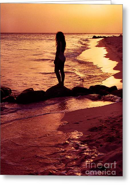 Curvy Beauties Greeting Cards - Sunset Silhouette Druif Beach Aruba Greeting Card by Thomas R Fletcher