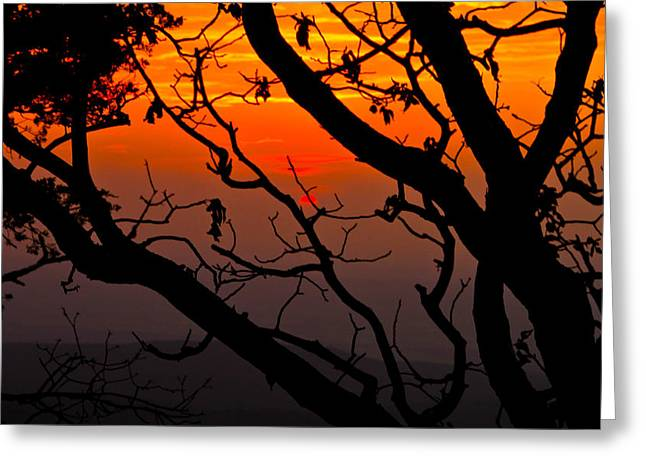 Mt Magazine Greeting Cards - Sunset Silhouette Greeting Card by John Roberts