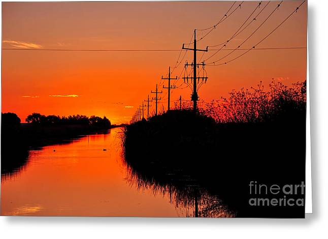 Reflections In River Greeting Cards - Sunset Silhouette Greeting Card by Kaye Menner