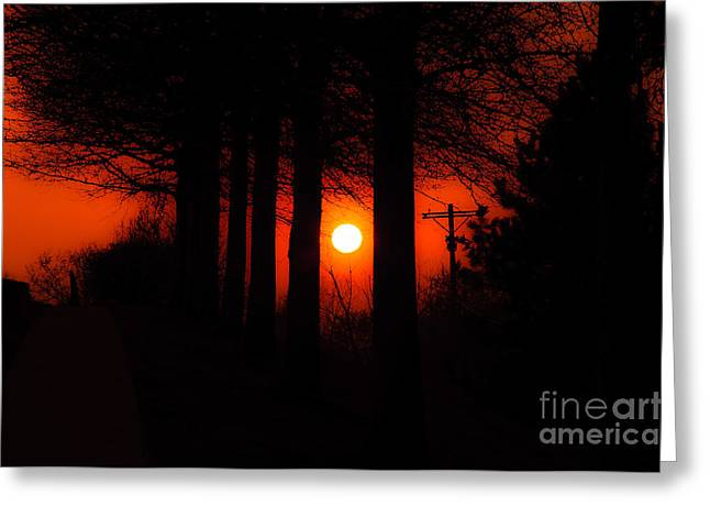 Summer Scene Mixed Media Greeting Cards - Sunset Silhouette Painterly Greeting Card by Andee Design