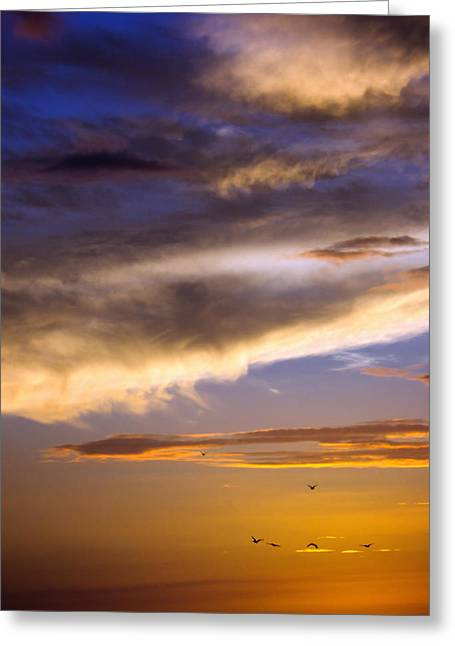 Lahaina Greeting Cards - Sunset Sky Greeting Card by Vicki Jauron